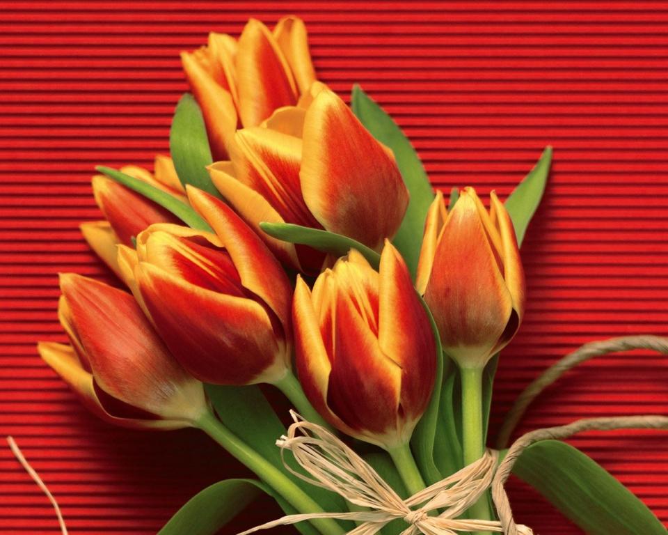 Праздничные цветы картинки 1