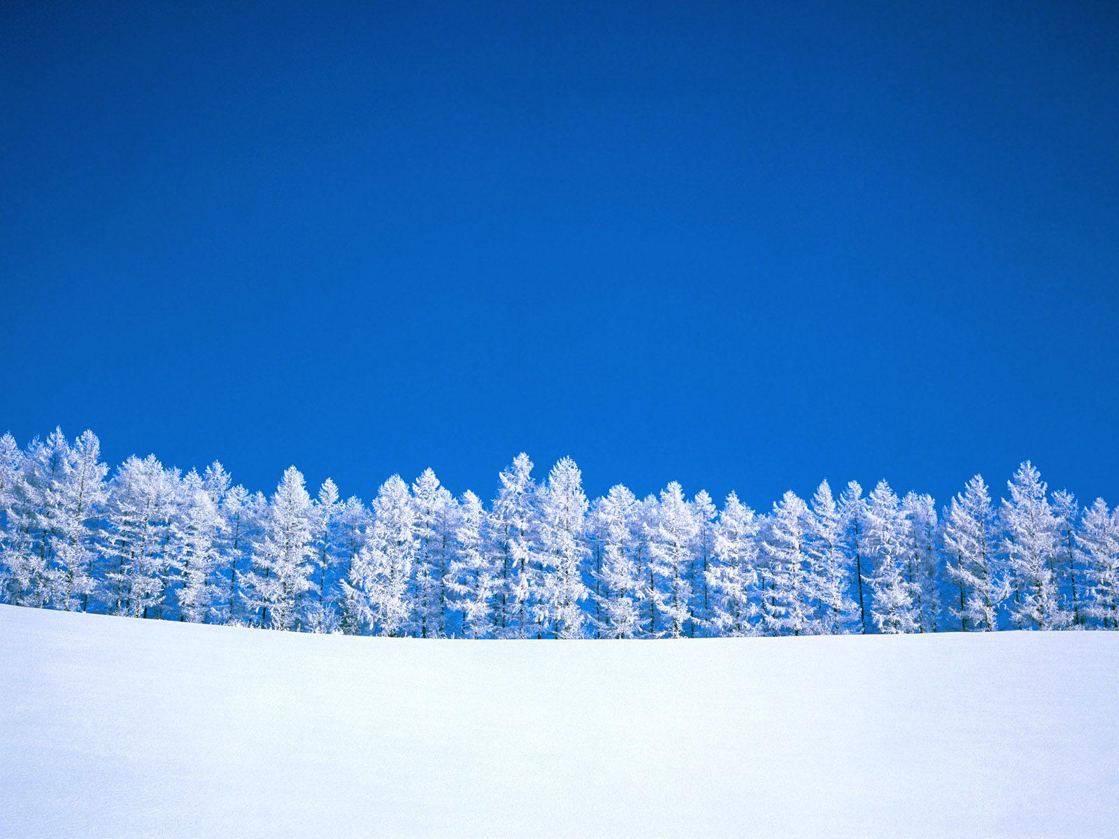 Зима записи в рубрике зима дневник