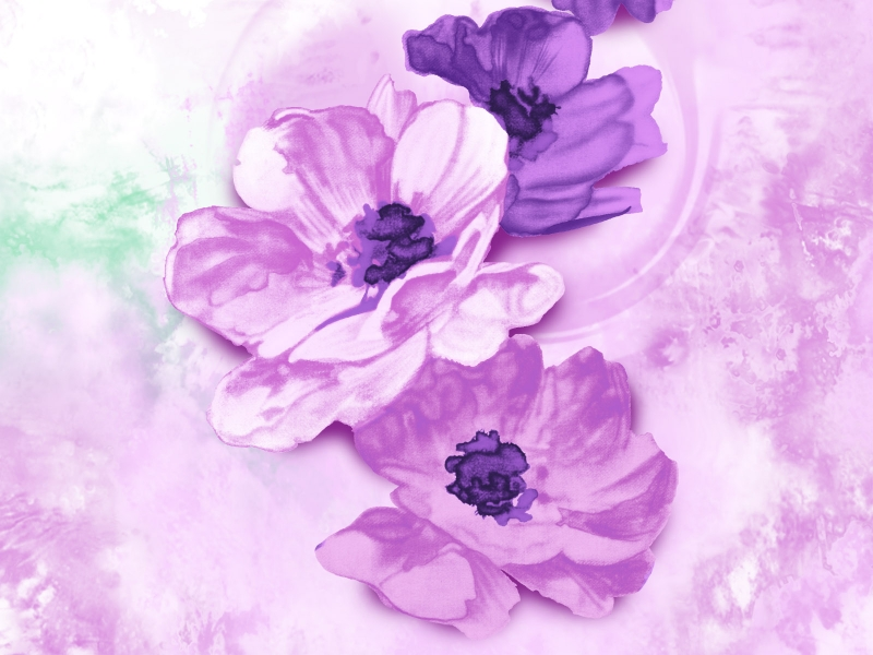 http://o6oi.ru/main.php/37892-4/flower_painting_05.jpg