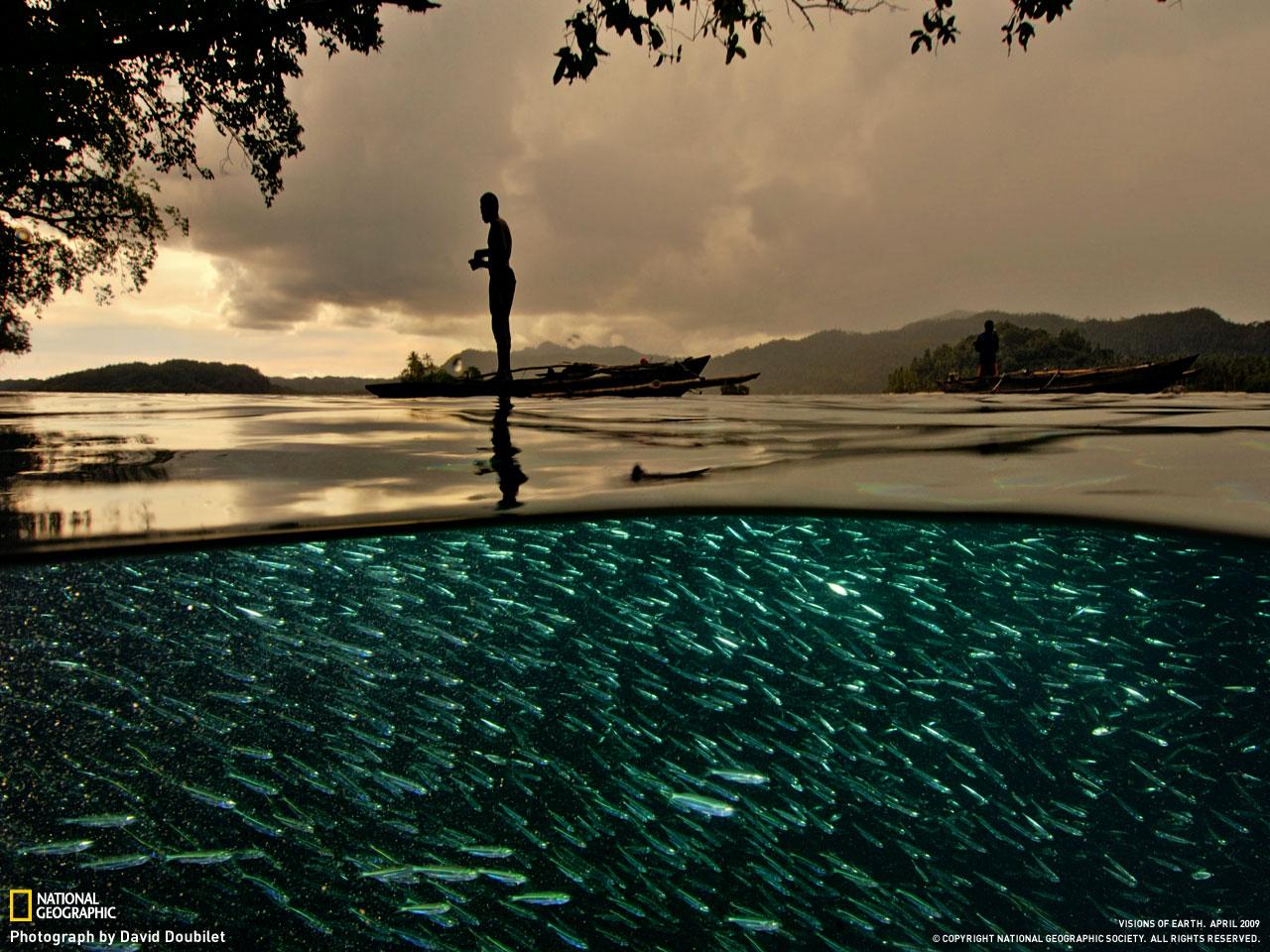 Выборка фото, из коллекции лучших фотографий National Geographic.