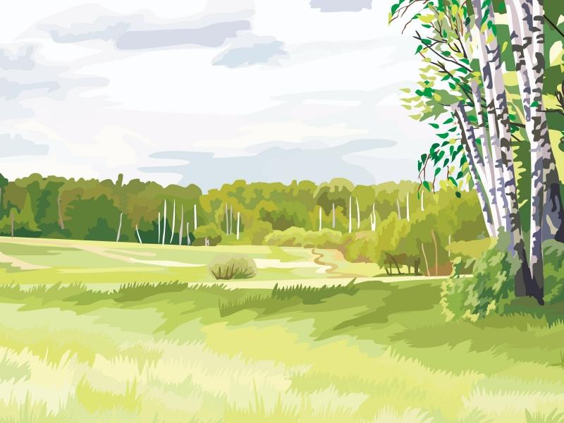 Рисунок красивой природы